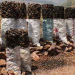 چوب زغال Charcoal - wood